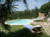 Bed and Breakfast Florence la paggeria